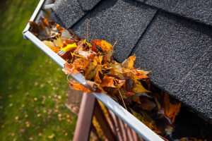 Can Clogged Gutters Damage Your Home?