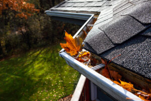 Do Gutter Guards Work With Pine Needles